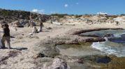 Limpiando la costa de Es Carnatge