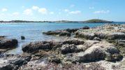 Zona rocosa que divide en dos la playa de Ses Illetes