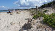 Zona acordonada tras playa de ses canyes formentera