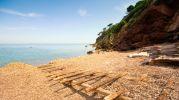 playa llena de restos de algas