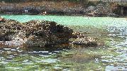 personas en las rocas buscando cangrejos