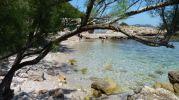 playa vista desde la sombra de un árbol
