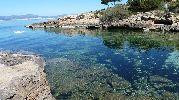 playa con rocas y algas en el fondo