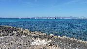 regata en la bahía vista desde la playa