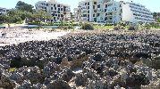 hoteles a pocos metros de la playa