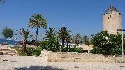 jardines y un molino cerca de la playa