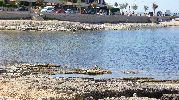 orilla casi sin arena, todo son rocas