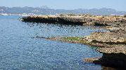hombre buscando cangrejos en las rocas