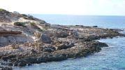 Casetas varadero en Es Ram Formentera