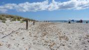 Zona acordonada para proteger las dunas de las pisadas