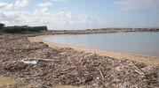 En la zona central de la playa hay arena y posidonia