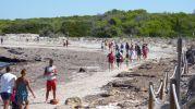 Zona de dunas acordonadas en Es Peregons petits