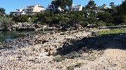 orilla llena de grandes rocas