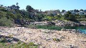 pequeña playa con agua verdosa
