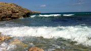 olas viniendo hacia la orilla