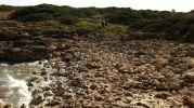 playa formada por miles de rocas
