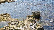 bonitas formaciones rocosas en el fondo