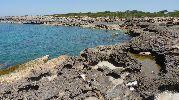pequeños charcos de agua en los agujeros de entre las rocas